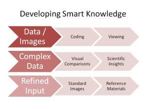 Developing Smart Knowledge